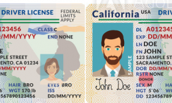 California Driver's License